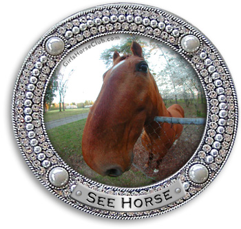 See Horse