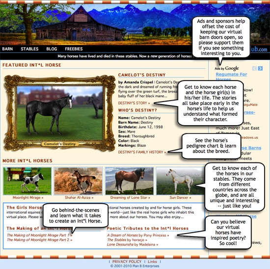 Info About the Girls Horse Club Stables