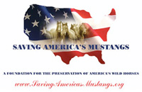 Saving Americas Mustangs