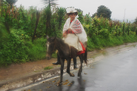 Horses as Commuter Vehicles in Guatemala